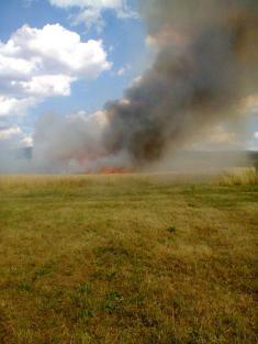 Požár u Dolní Lukavice