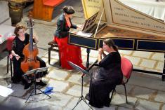 28. ročník Haydnovo hudebních slavností