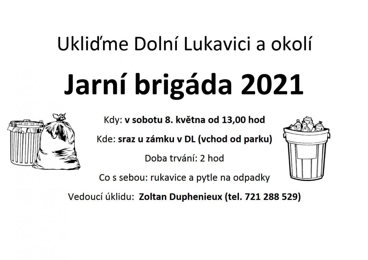 Ukliďme Dolní Lukavici a okolí 1